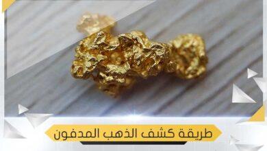 Photo of الكشف عن الذهب بطريقة بسيطة