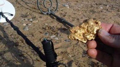 Photo of نوع التربة التي يوجد بها الذهب