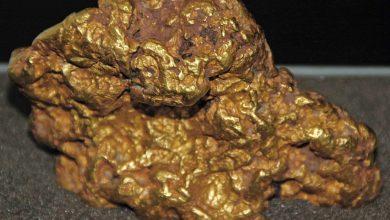 أنواع الصخور التي تحتوي على الذهب